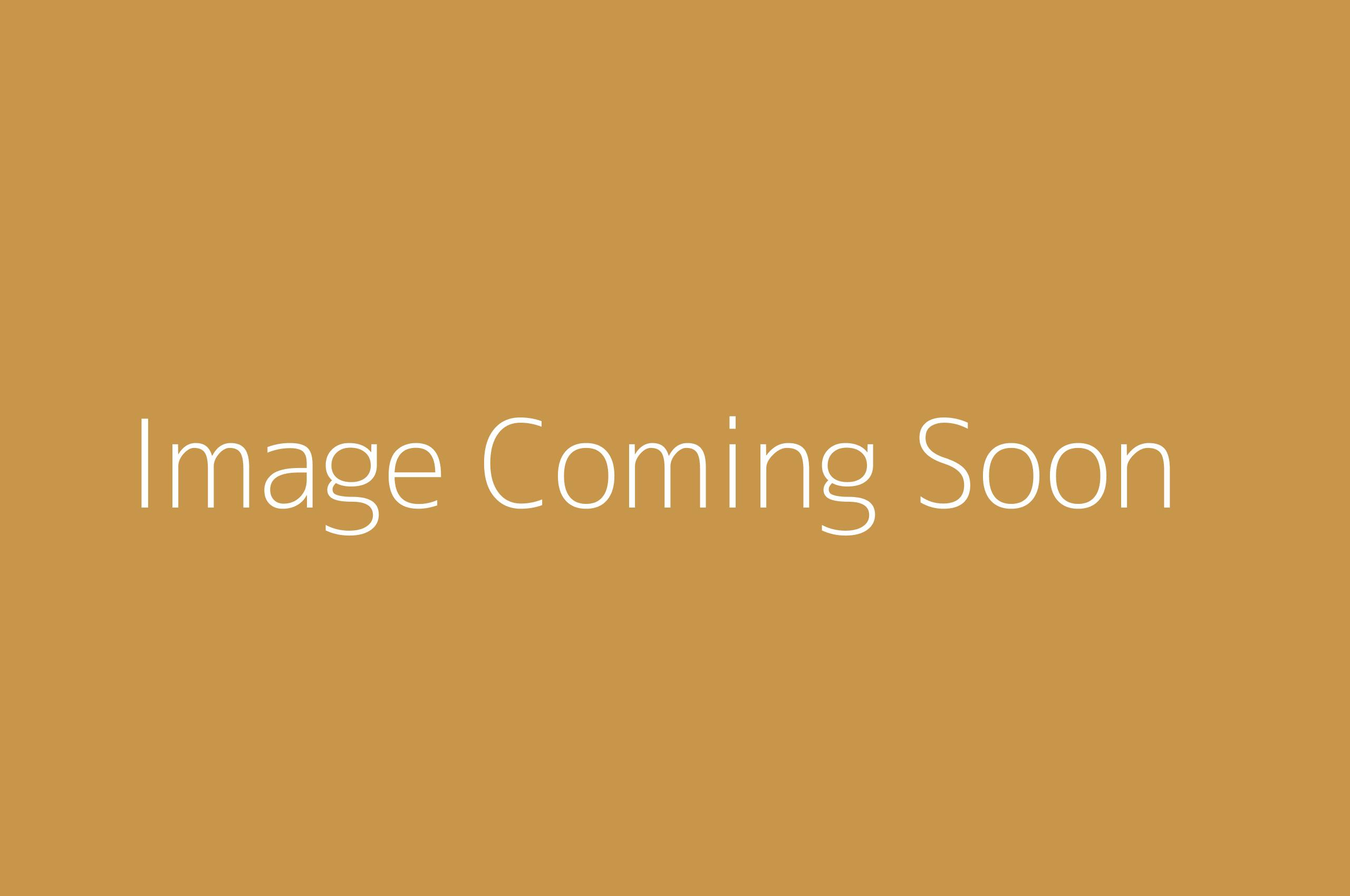 Default page for pg.php * PLEAES CHANGE THIS TITLE * Image Coming Soon