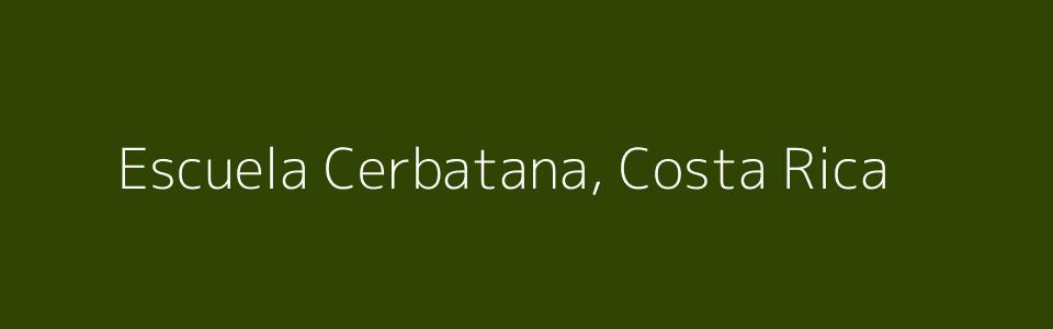 Dummy image for text 'Escuela Cerbatana, Costa Rica'. Banner Size: 960 x 300